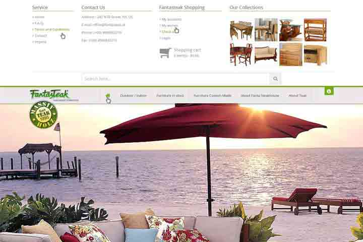 Website Devlopment-furniture-template